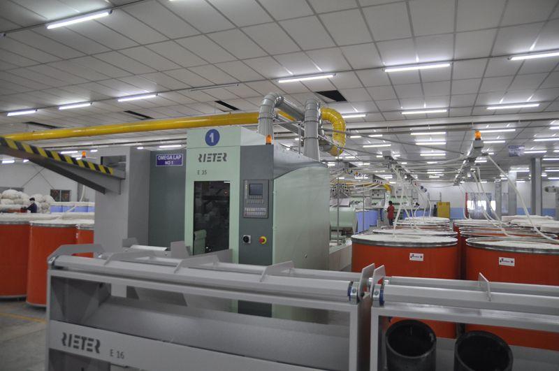 Pittie Group, SVP Global Ventures, Pittie Textile
